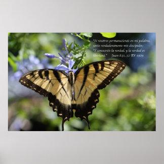 Tigre Swallowtail del mariposa de la estafa de Jua Póster