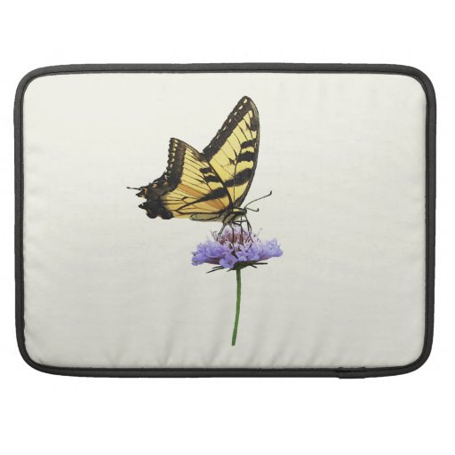 Tigre Swallowtail en aster Fundas Para Macbook Pro