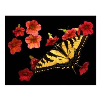 Tigre Swallowtail en las flores rojas Tarjetas Postales