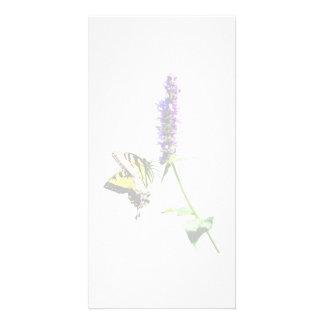 Tigre Swallowtail en Salvia púrpura Tarjetas Con Fotos Personalizadas