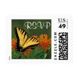 Tigre Swallowtail - franqueo de RSVP