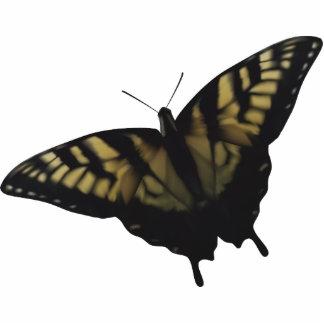 Tigre Swallowtail Imán Fotoescultura