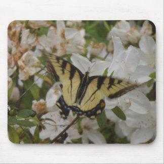 Tigre Swallowtails del amor de madres Tapete De Ratón