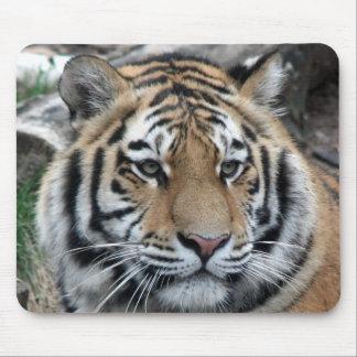 Tigre Alfombrillas De Ratones
