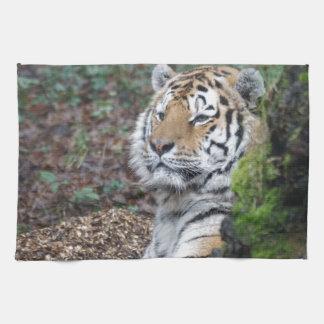 Tigre Toalla De Mano
