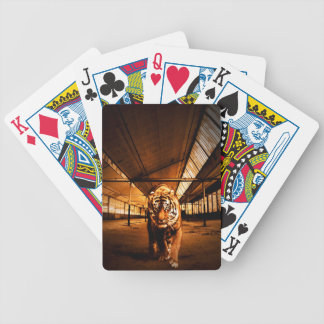 Tigre urbano baraja de cartas