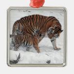 Tigre y cachorro en la foto hermosa de la nieve, adorno