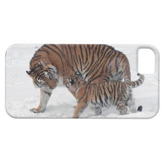Tigre y cachorro en la foto hermosa de la nieve, funda para iPhone SE/5/5s
