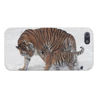 Tigre y cachorro en la foto hermosa de la nieve, r iPhone 5 carcasa