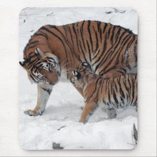 Tigre y cachorro en la foto hermosa de la nieve, r tapetes de raton