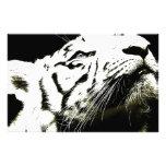 Tigre y esperanza papeleria