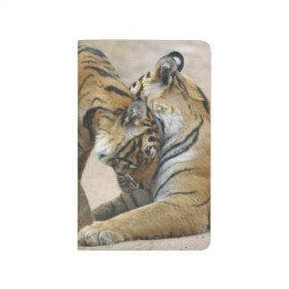 Tigre y jóvenes reales de Bengala unos - tocando Cuaderno Grapado