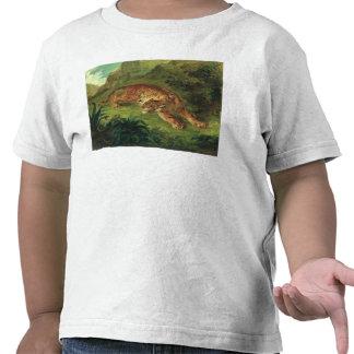 Tigre y serpiente, 1858 camisetas