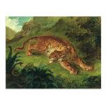 Tigre y serpiente, 1858 tarjeta postal