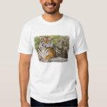 Tigre y templo budista polera