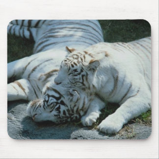 Tigres blancos 043 alfombrilla de ratones
