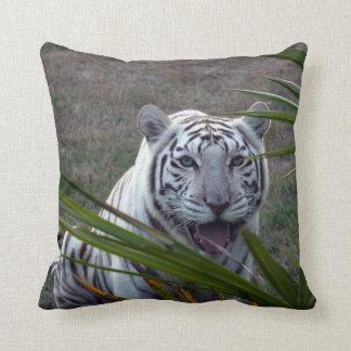Tigres blancos 6170e cojines