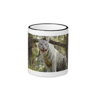 Tigres blancos en las tazas los Steins y las taza
