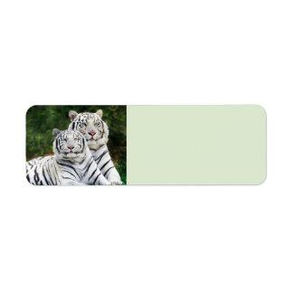 Tigres blancos etiqueta de remitente