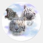 Tigres blancos etiqueta redonda