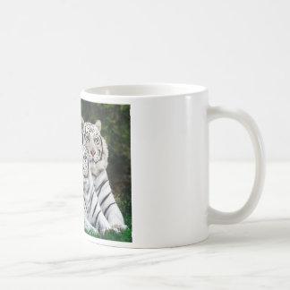 Tigres blancos hermosos taza