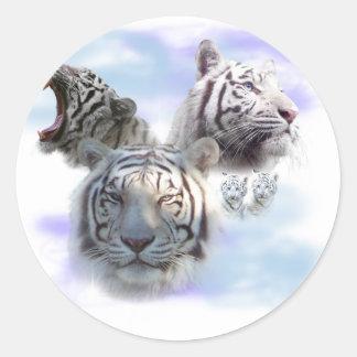 Tigres blancos pegatina redonda