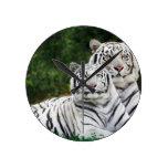 Tigres blancos relojes