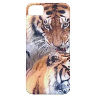 Tigres blandos de la estación del amor y de la ale iPhone 5 cárcasas