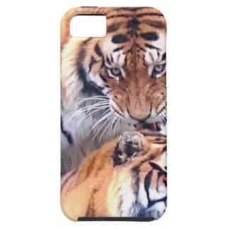 Tigres blandos de la estación del amor y de la ale iPhone 5 cobertura
