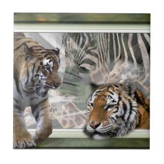 Tigres, cebra, jirafa, selva primitiva azulejo cuadrado pequeño