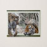 Tigres, cebra, jirafa, selva primitiva puzzle con fotos