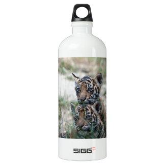 Tigres Cubs Botella De Agua