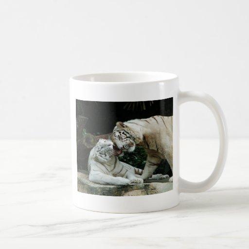 Tigres de Bengala blancos del amor y de la alegría Taza De Café