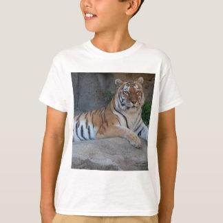 Tigres de Bengala Remeras