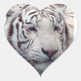 Tigres de desaparición pegatina en forma de corazón