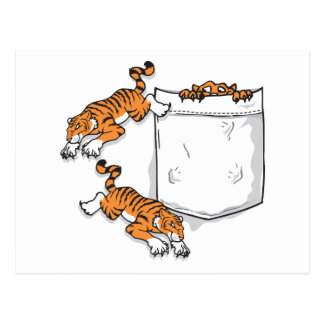 Tigres del bolsillo tarjetas postales