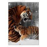 Tigres en nieve felicitación