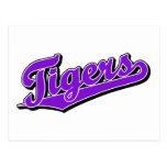 Tigres en púrpura tarjetas postales
