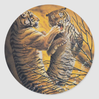Tigres que luchan del vintage pegatina redonda