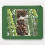 Tigres tres tapete de raton