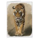 Tigresa de Ranthambhore (Satra) Tarjetas