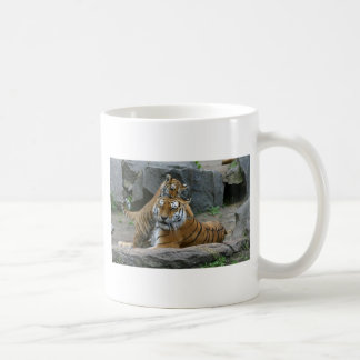 Tigress and playful tiger cub 1 coffee mug