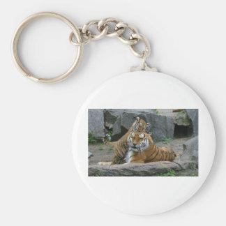 Tigress and playful tiger cub 1 keychain