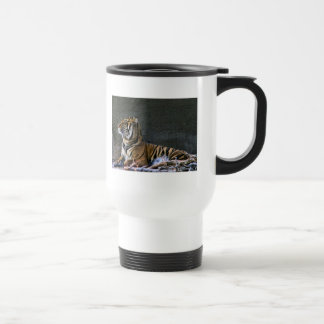 Tigress cup