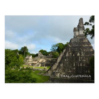 Tikal Guatemala Maya Temple View Postcard