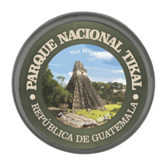 Tikal National Park Gunmetal Finish Lapel Pin