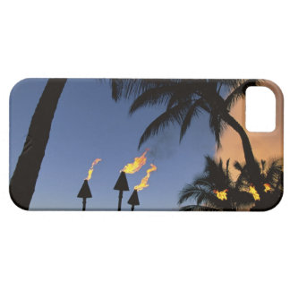 Tiki Torches Hawaii iPhone 5 Protectores