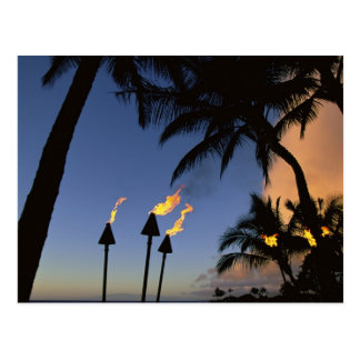 Tiki Torches Hawaii Postcard