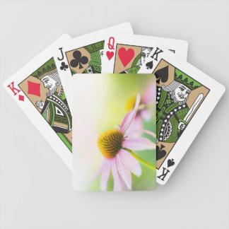 Til Sunbeams Find You Card Decks