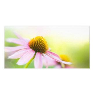 Til Sunbeams Find You Custom Photo Card
